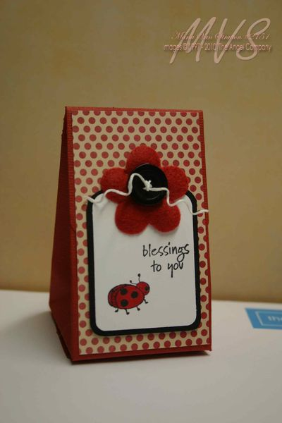 Little-Ladybug-Box